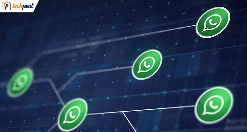 Know 5 Thing Before Using Whatsapp Messaging App