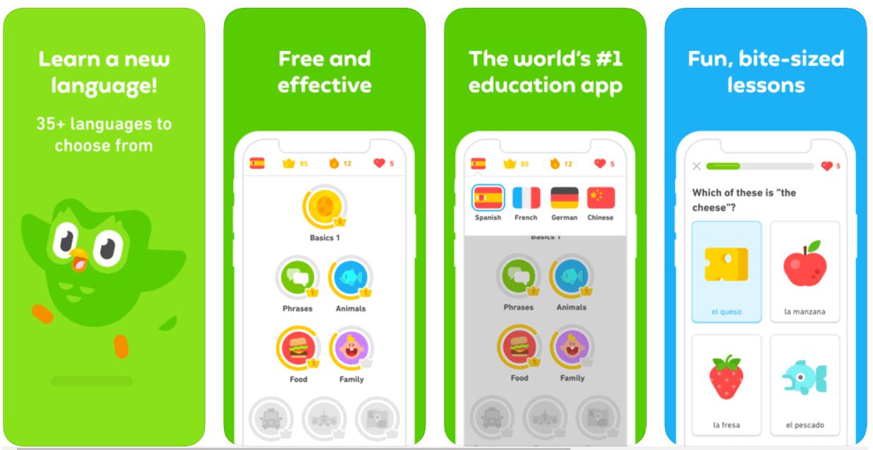 Duolingo - Best Free Language Learning App
