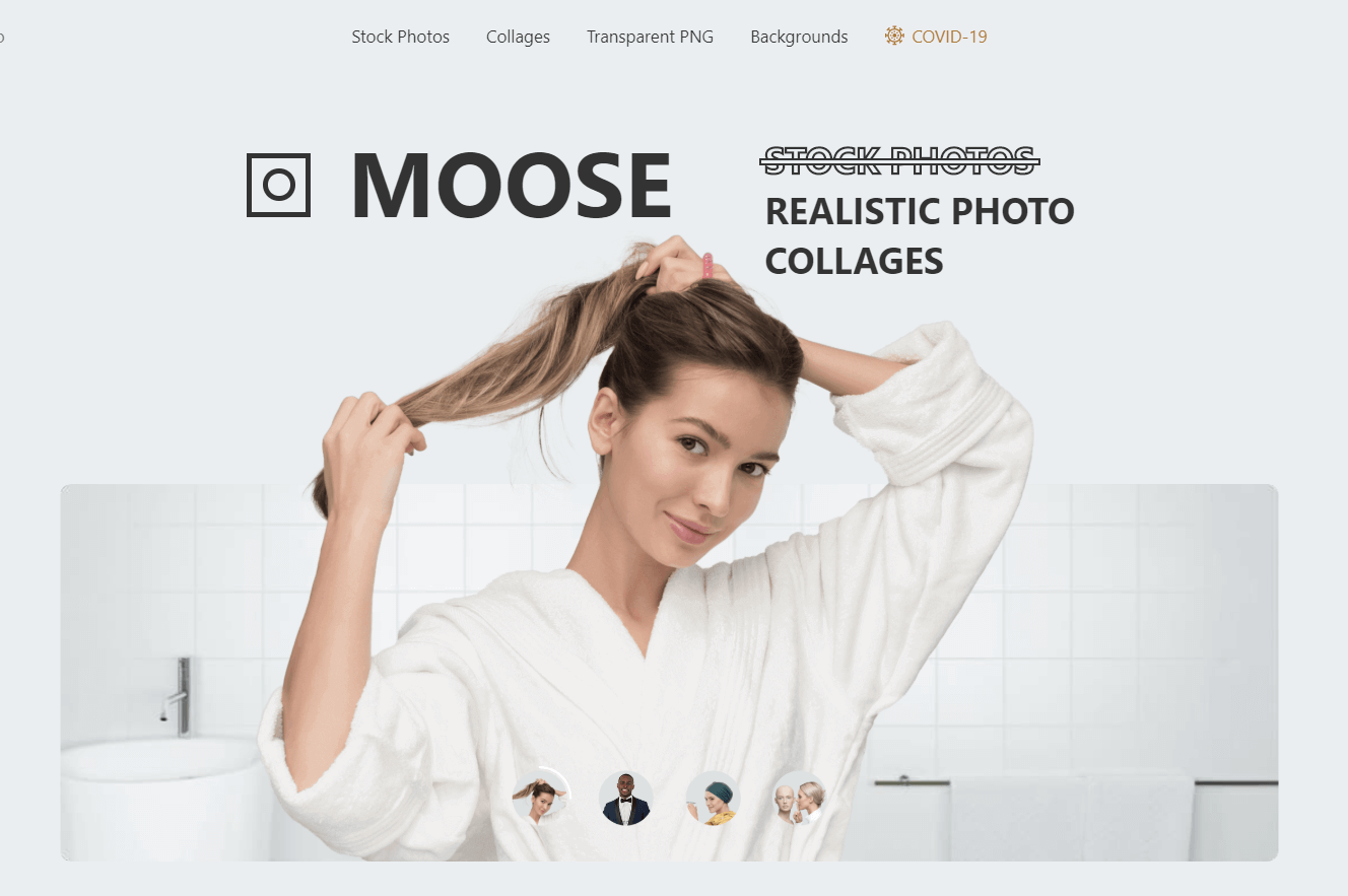 Moose - Best Website For Stock Photos