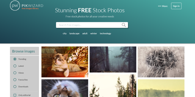 Free Stock Photo Website - Pikwizard
