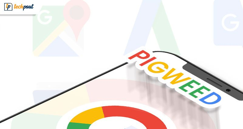 Google Files Trademark for New Operating System Called Pigweed