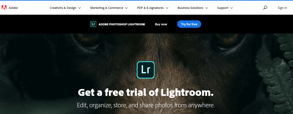 Adobe Lightroom CC - Best Alternative to Picasa
