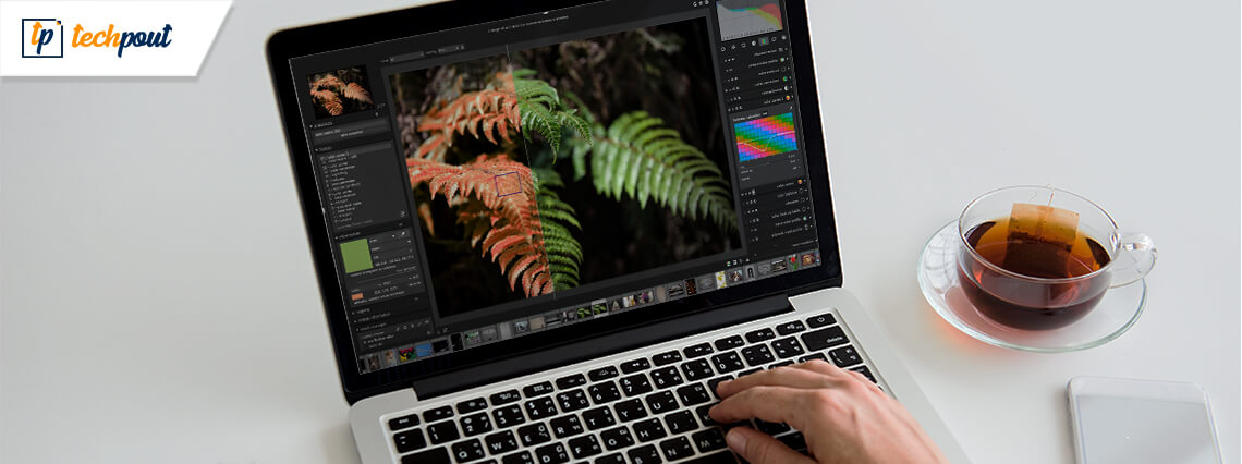 5 Best Free Lightroom Alternatives In 2020