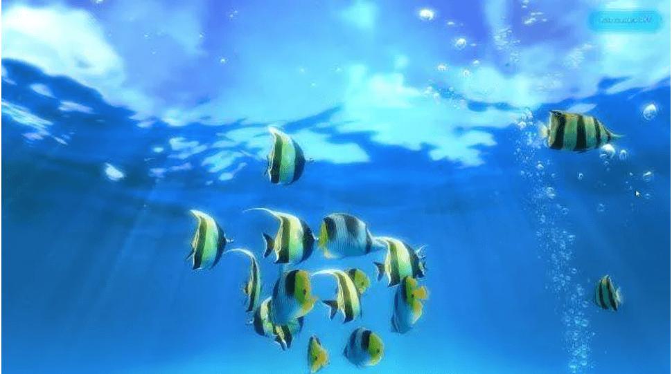Sim Aquarium 3 - Best Free Live Wallpaper