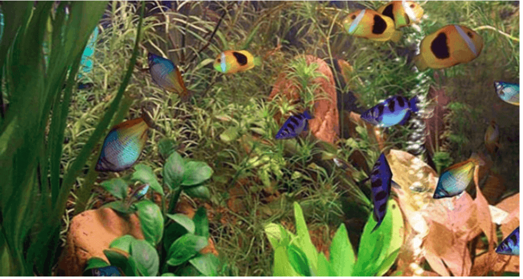 Aqua 3D Live Wallpaper For Windows 10
