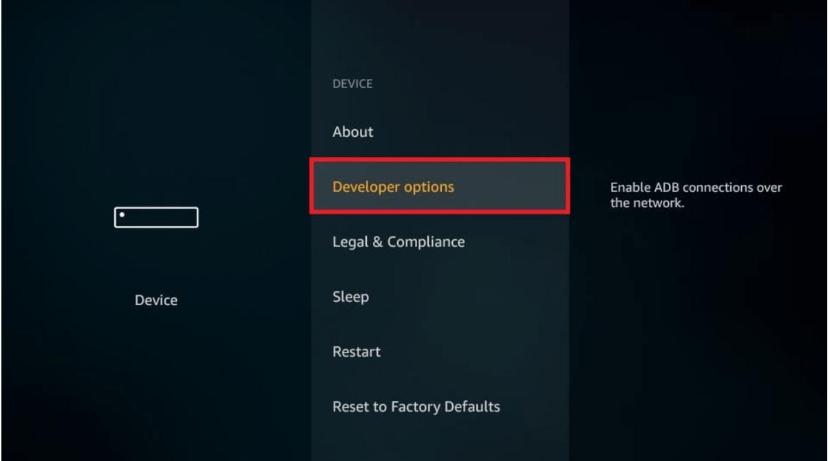 choose Developers option