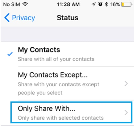 Only Share With button on iPhone WhatsApp