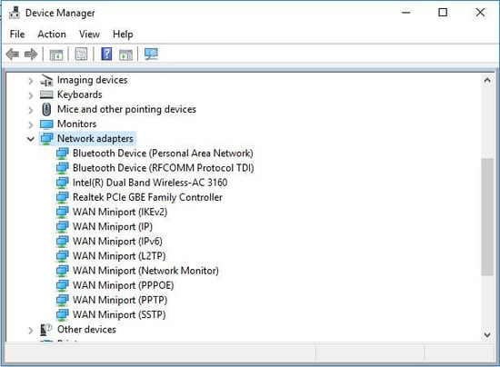 Device Manager Network adapter segment
