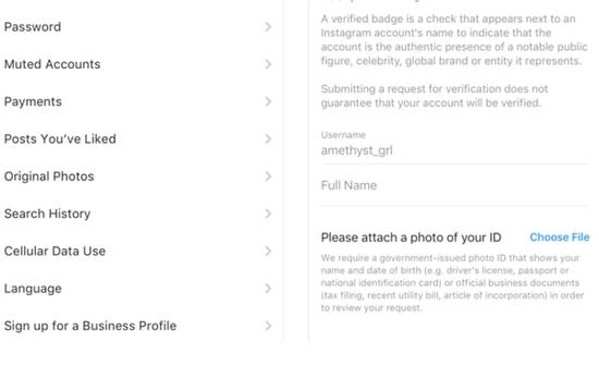 Instagram account verification steps