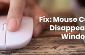 Fix: Mouse Cursor Disappears On Windows 10 [Solved]