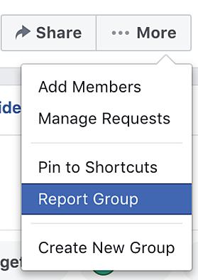 Facebook report group window
