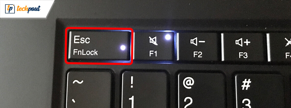 Esc Key Not Working on Windows 10 [Fixed]