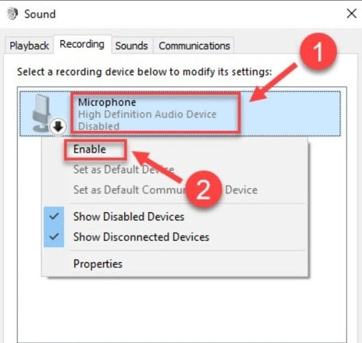 Microphone is Enabled in Recording Tab