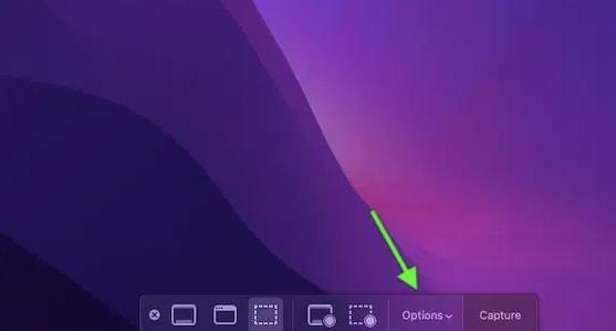 Choose Options from Screenshot Menu