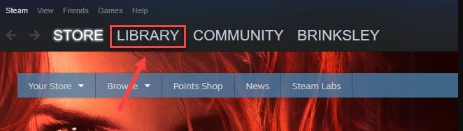 Choose the Library in Steam